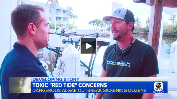 Good Morning America Captains For Clean Water: Stop Florida Activist Highlights Devastating Impact Algae Blooms   Captains for Clean Water National Coverage